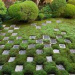 sten-i-græs_1_540